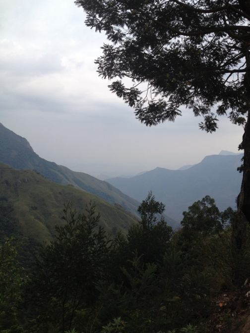 Top Station View Point, Munnar