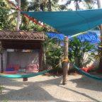our hammock garden